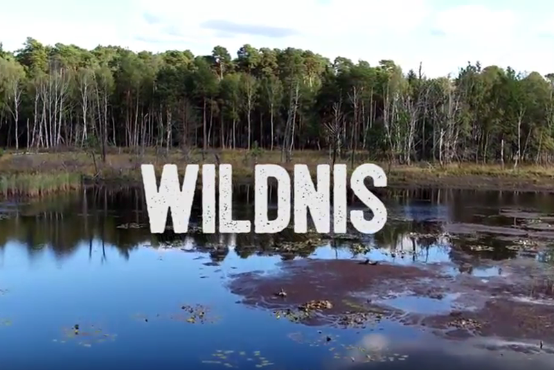 Neuer Film: Wildnis in Brandenburg